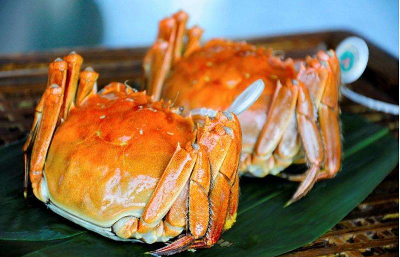 肥到漏油的大闸蟹,一口俘获你的胃